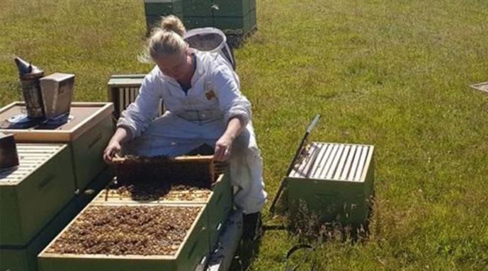 Amanda Cunningham - apicultor de True Honey Co.